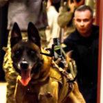 testimonial-harris-county-Sgt-Moore-1-1